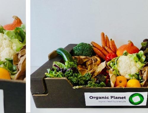 Regresso dos frescos, na Organic Planet escolha o seu cabaz semanal