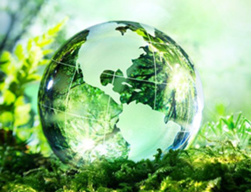 VSM Capital prepara reação estratégica à alteração de condições económicas